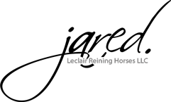Electric Code – Reining Horse Stallion